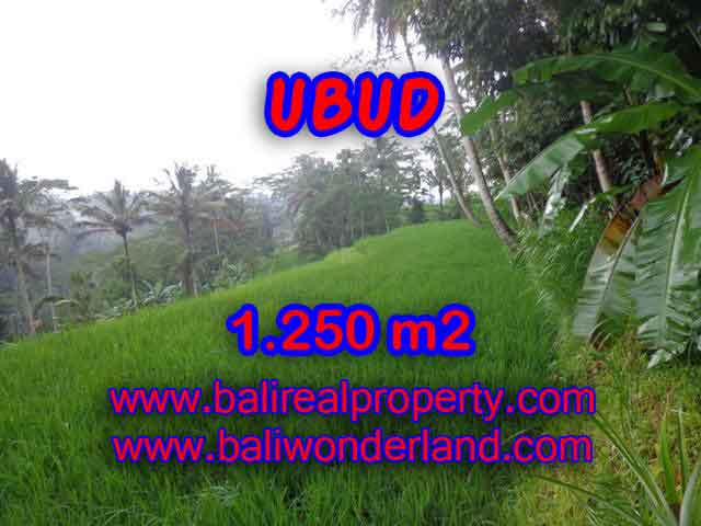 Land for sale in Ubud, Stunning view in Ubud Tampak siring Bali – TJUB405