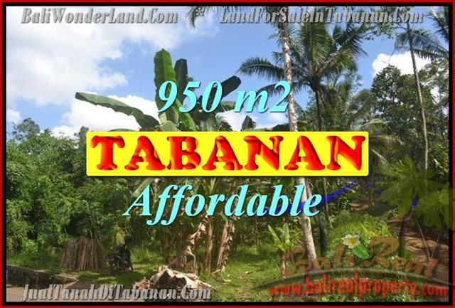 Land for sale in Tabanan Bali, Magnificent view in Tabanan Kota ( City ) – TJTB146