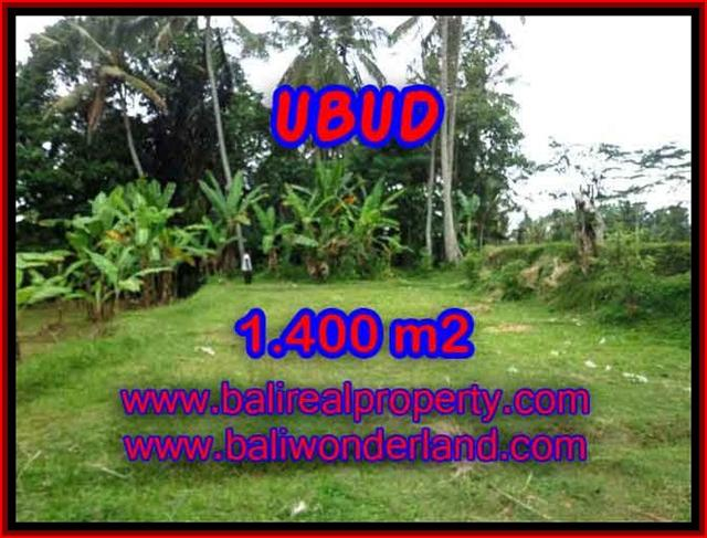 Land for sale in Bali, exceptional view in Ubud Tegalalang – TJUB419
