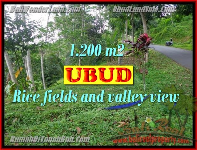 Land in Bali for sale, fantastic view in Ubud Bali – TJUB422