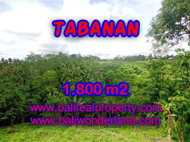 Bali Property for sale, Nice View land for sale in Tabanan Bali  – 1.800 m2 @ $ 28