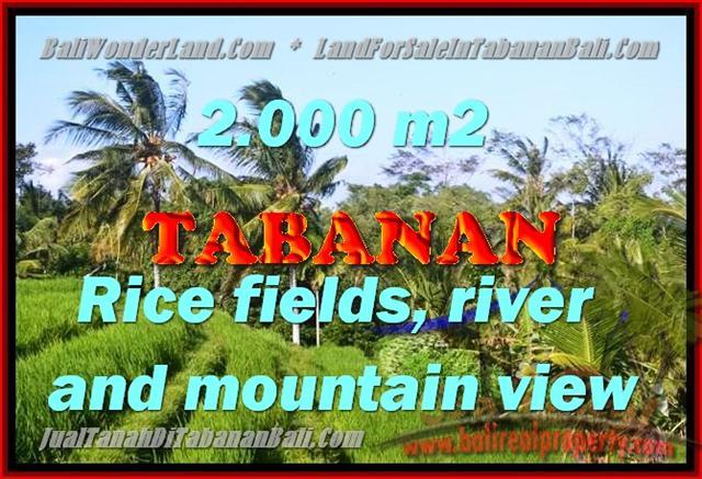 Land for sale in Tabanan, Fantastic view in Tabanan kediri Bali – TJTB147