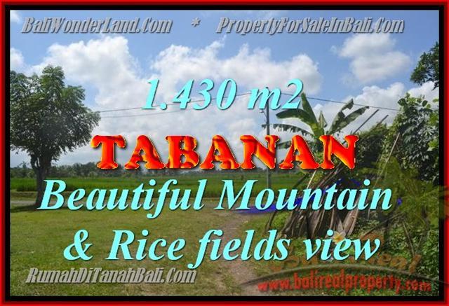 Fantastic Land for sale in Tabanan Bali, Mountain & Rice fields view in Tabanan Kota ( City )– TJTB145