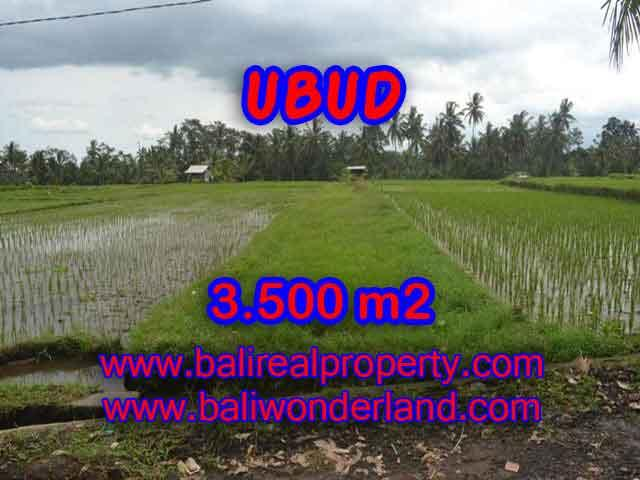 Land for sale in Ubud Bali, Astounding view in Ubud Pejeng – TJUB395