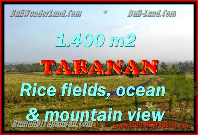 Land in Tabanan Bali for sale, Exotic view in Tabanan selemadeg – TJTB143