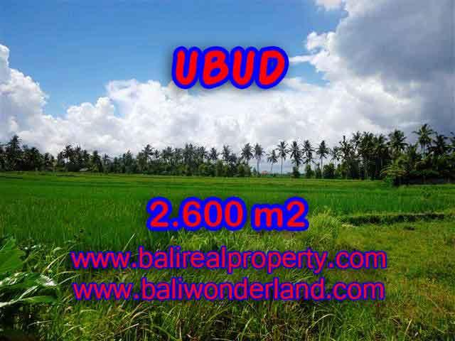 Astonishing Property for sale in Bali, LAND FOR SALE IN UBUD Bali – TJUB374