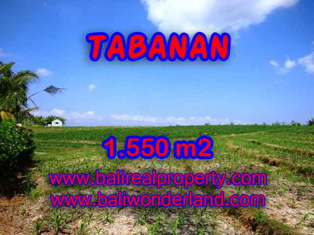 Spectacular Property in Bali, land for sale in Tabanan selemadeg – TJTB134