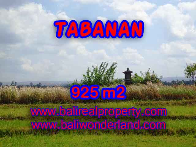 Exotic Property for sale in Bali, LAND FOR SALE IN TABANAN Bali – TJTB135