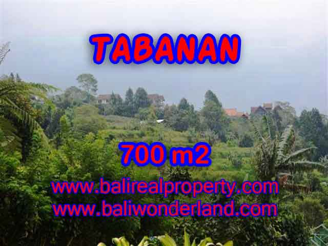 Land in Bali for sale, astounding view in Tabanan Bali – TJTB103