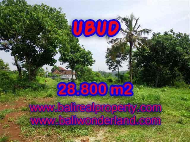 Land in Bali for sale, Stunning view in Ubud Bali – TJUB366