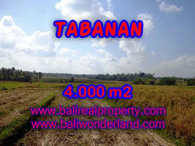 Fantastic Property for sale in Bali, land sale in Tabanan Bali – TJTB132