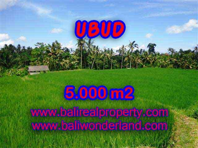Excellent Property for sale in Bali, land for sale in Ubud Bali – TJUB389