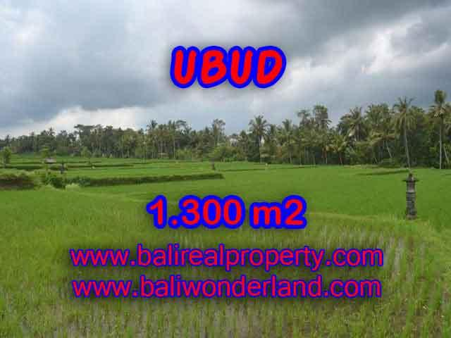 Land for sale in Ubud Bali, Unbelievable view in Ubud Pejeng – TJUB394