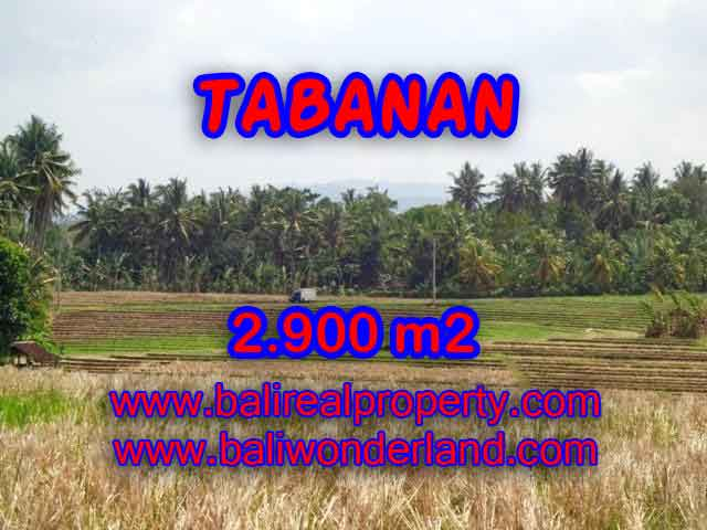Excellent Property for sale in Bali, land for sale in Tabanan Bali  – TJTB136