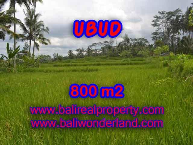 Magnificent Property for sale in Bali, land for sale in Ubud Bali – TJUB393