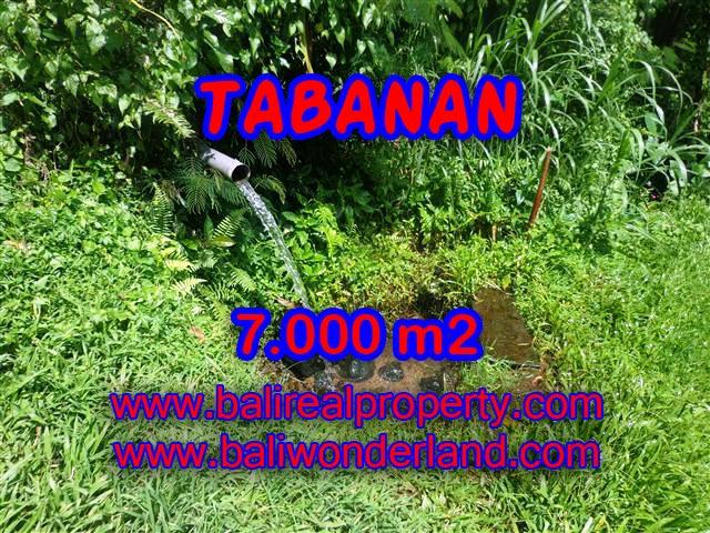 Land in Tabanan for sale, Amazing view in Tabanan Penebel Bali – TJTB089