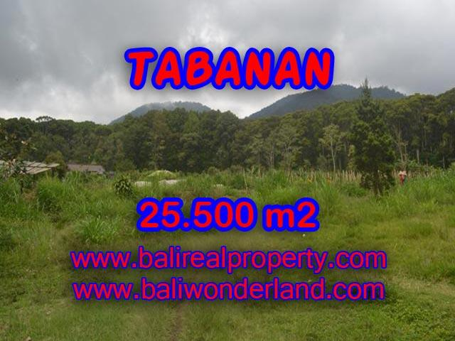 Fantastic Land for sale in Tabanan Bali, forest and valley view in Bedugul Tabanan– TJTB085