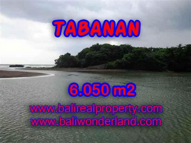 Land in Tabanan Bali for sale, Outstanding view in Tabanan Selemadeg – TJTB098