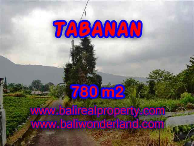 Extraordinary Land for sale in Tabanan Bali, Lake and mountain view in Tabanan Bedugul– TJTB100