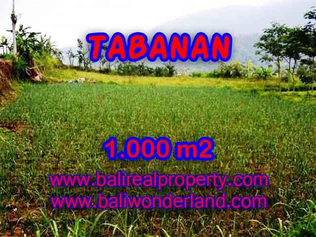 Land for sale in Bali, amazing view in Tabanan Bedugul – TJTB101