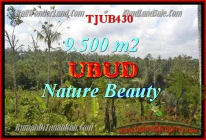 Exotic UBUD 9,500 m2 LAND FOR SALE TJUB430