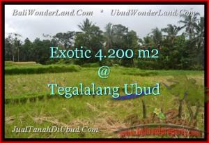 Affordable PROPERTY Ubud Tegalalang BALI LAND FOR SALE TJUB461