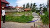 Affordable 350 m2 LAND IN Ubud Tegalalang FOR SALE TJUB476