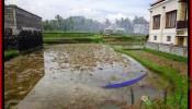 Beautiful PROPERTY 350 m2 LAND SALE IN Ubud Tegalalang BALI TJUB476