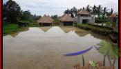 Affordable PROPERTY 350 m2 LAND FOR SALE IN Ubud Tegalalang BALI TJUB476