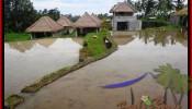 Exotic Ubud Tegalalang 350 m2 LAND FOR SALE TJUB476