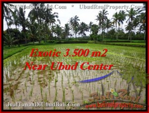 FOR SALE Beautiful 3,500 m2 LAND IN UBUD TJUB477
