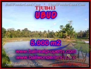 Beautiful Ubud Payangan BALI LAND FOR SALE TJUB413