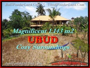 Exotic PROPERTY LAND FOR SALE IN Sentral Ubud TJUB460