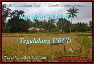 Beautiful UBUD BALI 3,280 m2 LAND FOR SALE TJUB463