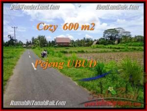 600 m2 LAND SALE IN UBUD TJUB465