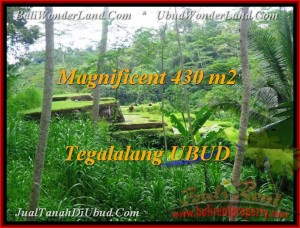Exotic Ubud Payangan BALI LAND FOR SALE TJUB466