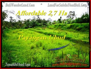 Beautiful PROPERTY UBUD LAND FOR SALE TJUB469