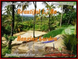 Magnificent LAND SALE IN Ubud Payangan BALI TJUB470