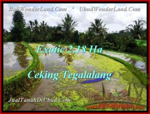 Affordable LAND IN Ubud Tegalalang BALI FOR SALE TJUB471