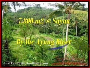 Magnificent LAND SALE IN Near Ubud Center BALI TJUB472