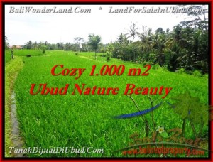 Magnificent PROPERTY UBUD BALI 1,000 m2 LAND FOR SALE TJUB478