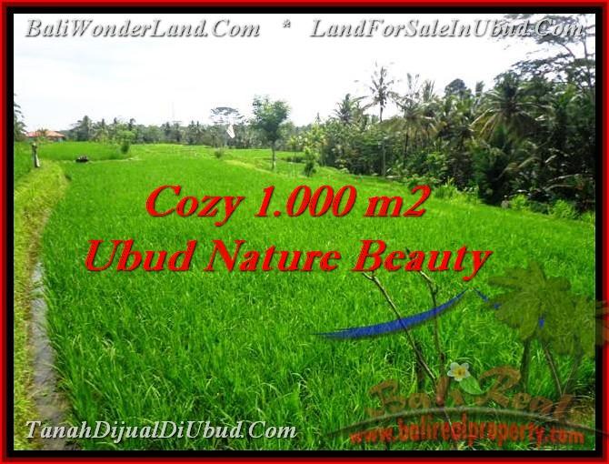 Affordable property 1 000 m2 land for sale in ubud bali for Gartengestaltung 1000 m2