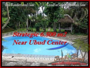 Magnificent LAND IN Ubud Tegalalang BALI FOR SALE TJUB479