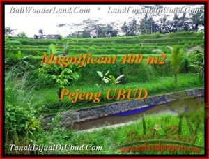FOR SALE LAND IN Ubud Pejeng TJUB483