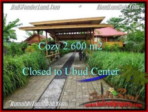 UBUD 2,600 m2 LAND FOR SALE TJUB491