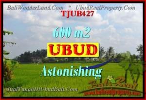 FOR SALE Exotic PROPERTY LAND IN Ubud Tegalalang BALI TJUB427