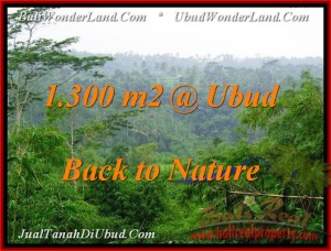 Exotic LAND FOR SALE IN Ubud Tegalalang BALI TJUB481