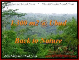 Exotic LAND FOR SALE IN Ubud Tegalalang BALI TJUB481