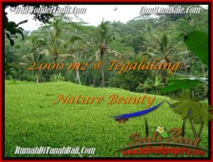 Beautiful PROPERTY LAND IN UBUD FOR SALE TJUB490