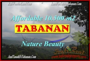 Affordable LAND IN Sukasada BALI FOR SALE TJTB165